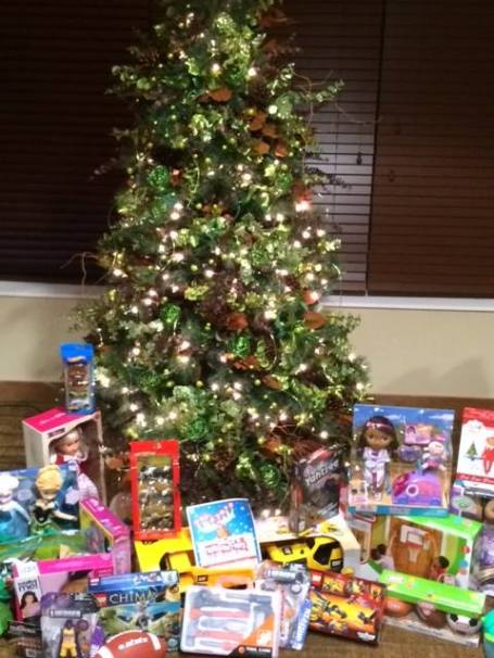 Genesee Toys For Tots
