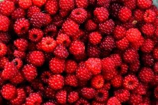 8berries